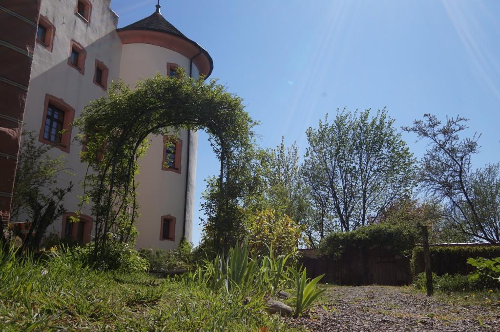 Schloss Hohenfels Rosengarten